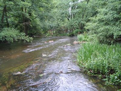 Bild Naturpark Sternberger Seenland