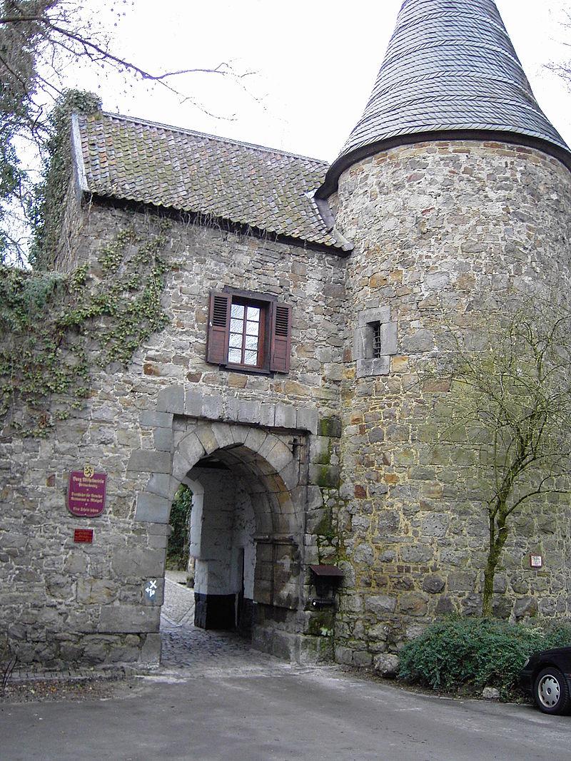 Bild Burg Wilhelmstein Würselen