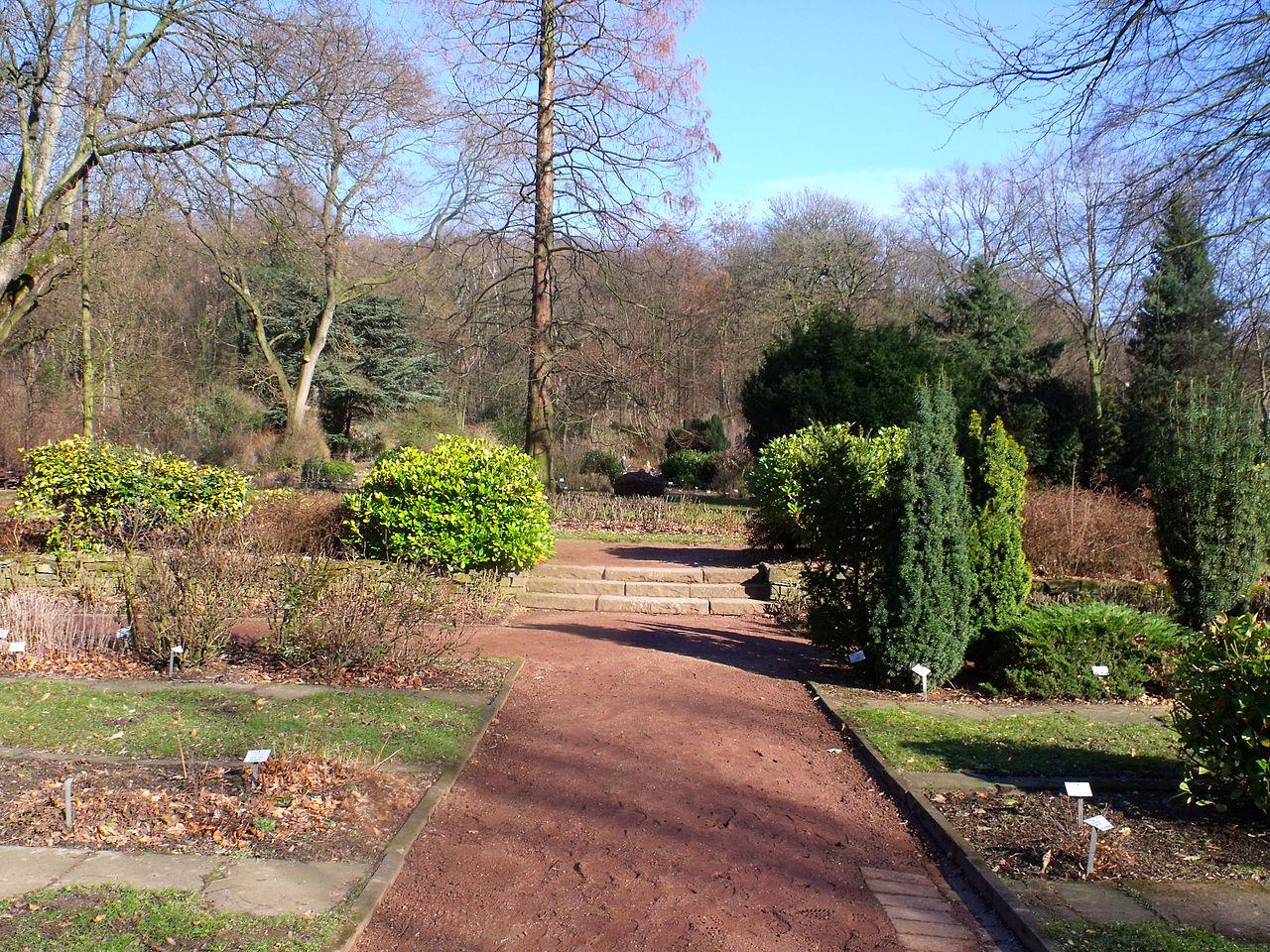 Bild Botanischer Garten Hamborn
