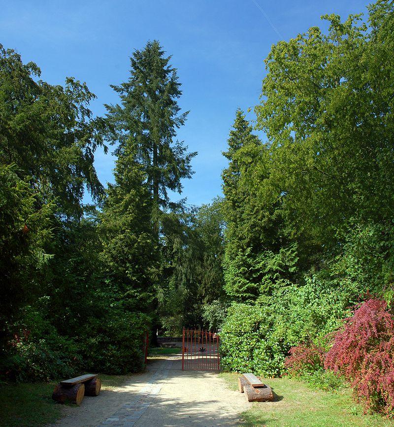 Bild Forstbotanischer Garten Eberswalde