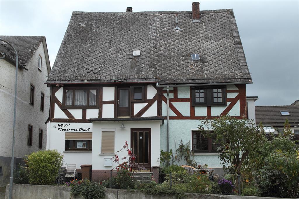 Bild Fledermaushaus Allendorf