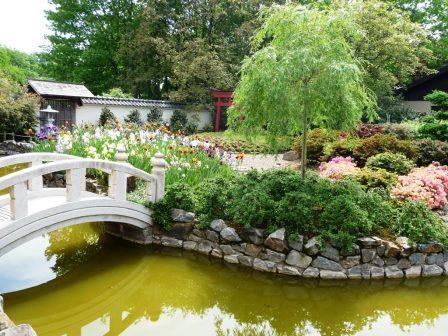 Bild Japan Gardens Design