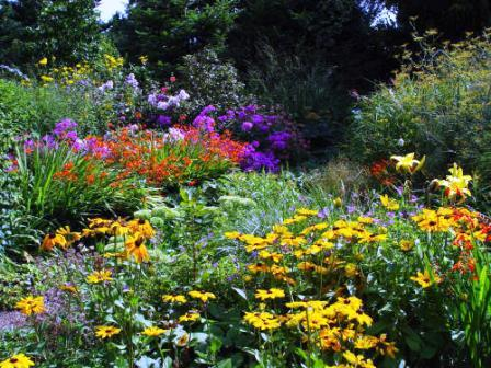 Bild Bauerngarten Anke zu Jeddeloh