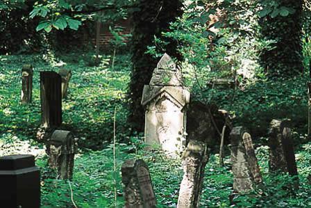 Bild Israelitischer Friedhof Dessau