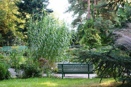 Bild Arboretum Greifswald