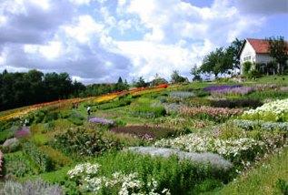 Bild Garten der Geheimnisse Stroheim