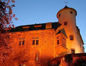 Bild Burg Neuerburg
