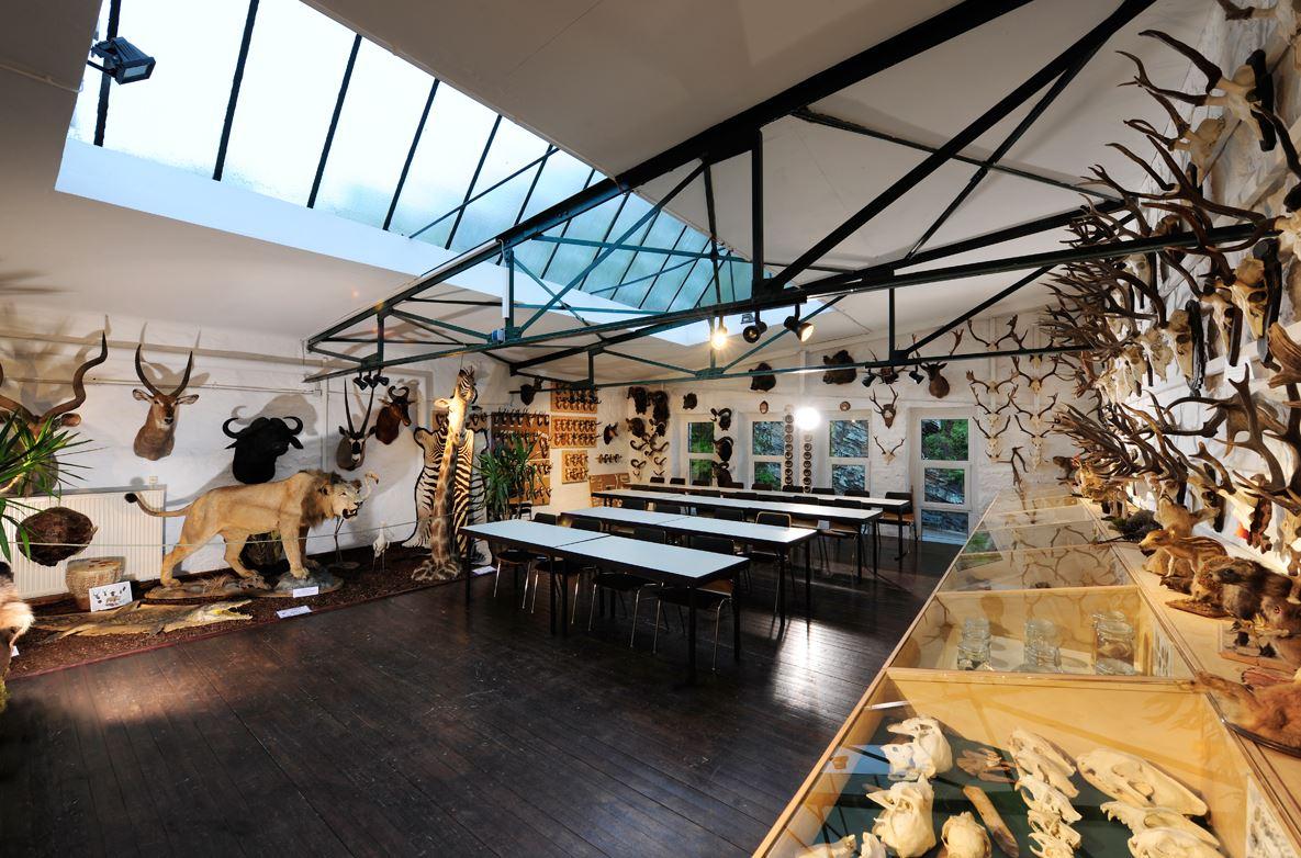 Bild Erlebnismuseum Lernort Natur Monschau