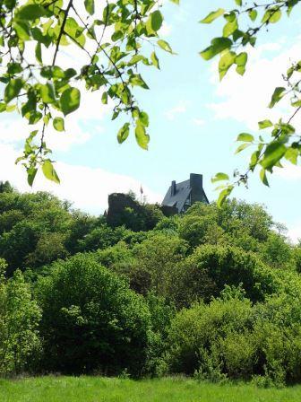 Bild Burg Waldeck Dorweiler
