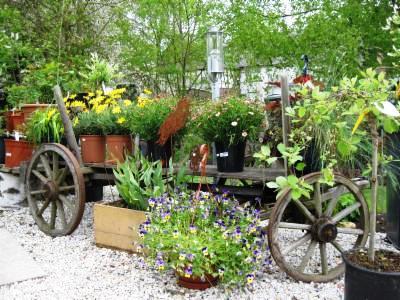 Bild Mensebachs Country Garden Benzweiler