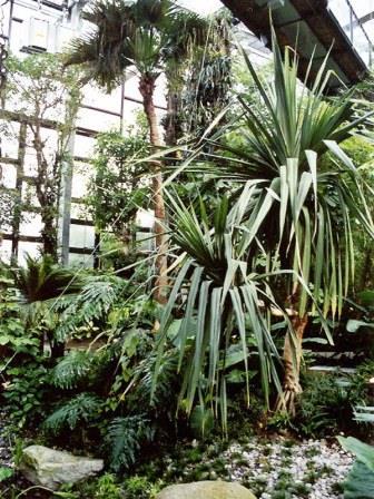 Bild Biosphäre Potsdam