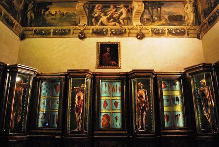 Bild Museo di Palazzo Poggi Bologna
