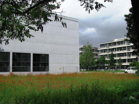 Bild Architekturmuseum der Technischen Universität München