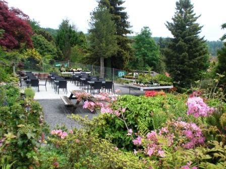 Bild Alpengarten Pforzheim