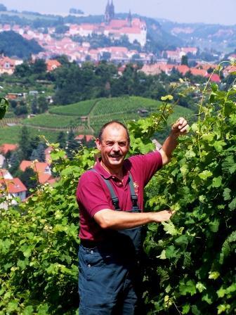 Bild Weingut Schuh Coswig