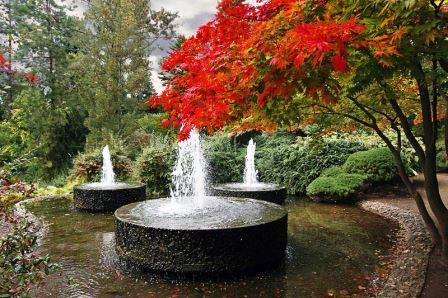 Bild Forstbotanischer Garten und Friedenswald Köln