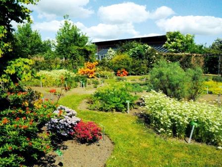 Bild Garten von Wangelin
