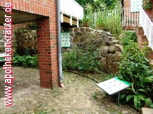Bild Apotheken Kräutergarten Gnoien