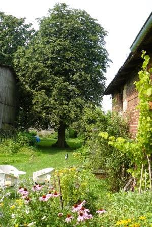 Bild Atelier & Garten Charlotte Bieligk Hollerhof