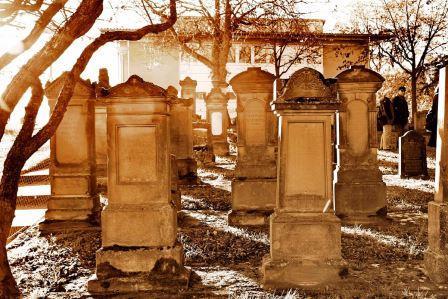 Bild Jüdischer Friedhof Mainz Ebersheim