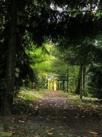 Bild Forstgarten Jägerhof Greifswald
