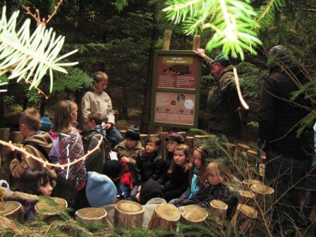 Bild Erlebnispfad im Erholungswald Dargun