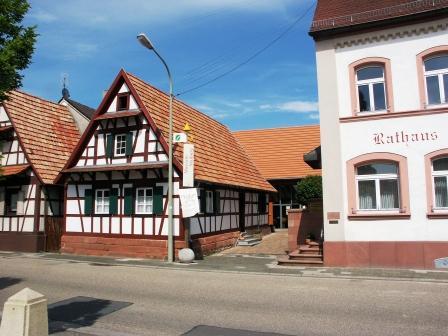Bild Rheinaue Museum Neuburg