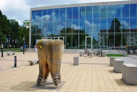 Bild Zentrum für Zahn-, Mund- und Kieferheilkunde der Ernst-Moritz-Arndt-Universität in Greifswald