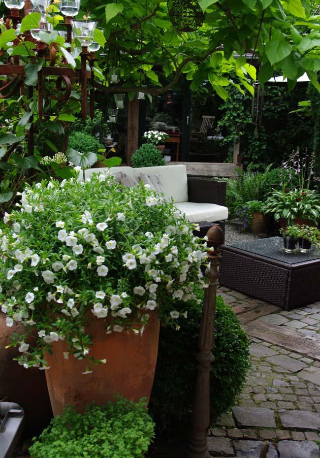 Bild Panthen Gartenkultur Lohmar