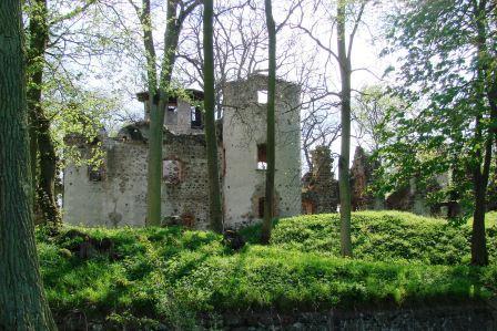 Bild Ruine Veste Landskron