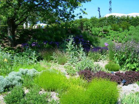 Bild Garten der Begegnung Merzig