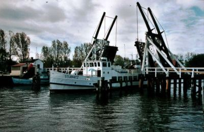 Bild Boddenrundfahrt Greifswald