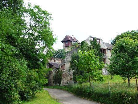 Bild Burg Sponeck Jechtingen am Kaiserstuhl