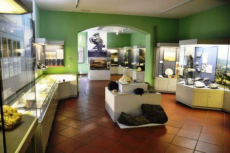 Bild Naturkundemuseum Ostbayern Regensburg