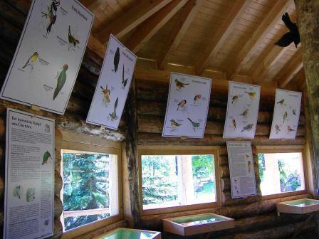 Bild Vogelfangmuseum Oberwiesenthal