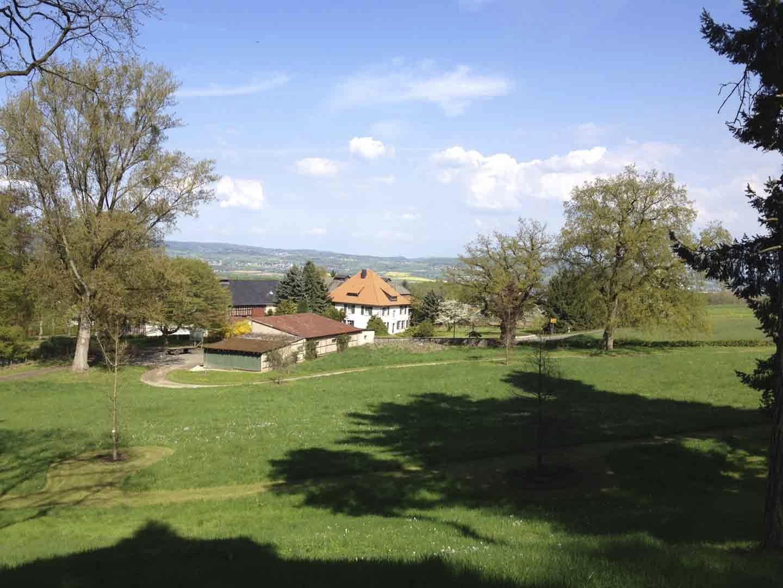 Bild Schlosspark Hofgut Molsberg