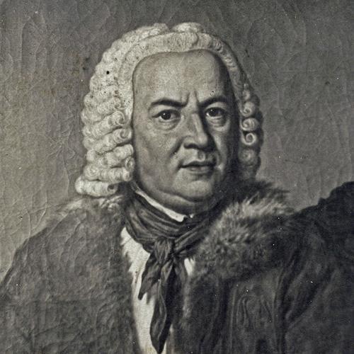 Bild Bach Führung Köthen